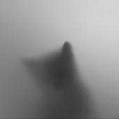 Avatar for fogcat2