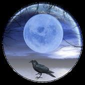 Avatar for walkinraven