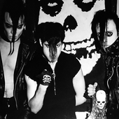 The Misfits by David Arnoff.