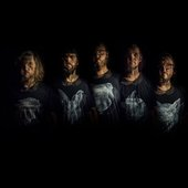 Celestial wolves band picture