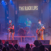 The-Black-Lips-5495-Large1.png
