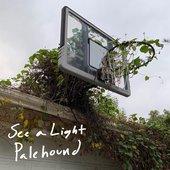 See a Light - Single