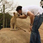 Lion+Andre