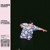 Teenage Breakdown (feat. Lurkgurl) - Single