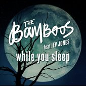 While You Sleep (feat. Ev Jones)