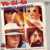secret service   ye-si-ca