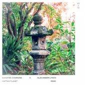 W/O (feat. Alexander Lynch) [Captain Planet Remix] - Single