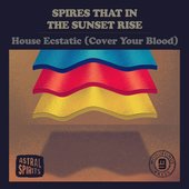 House Ecstatic (Cover Your Blood)