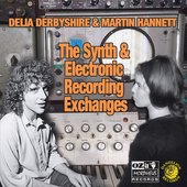 The Synth and Electronic Recording Exchanges