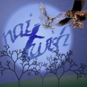 Avatar for naiTwish