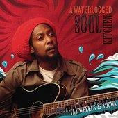 A Waterlogged Soul Kitchen