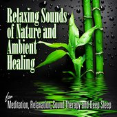 Relaxing Sounds of Nature and Ambient Healing for Mediation, Relaxation, Sound Therapy and Deep Sleep