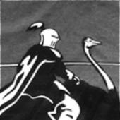 Avatar for OstrichKnight