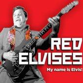 My Name Is Elvis!