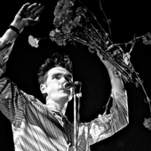 morrissey-and-flowers-1.png
