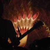 live nov 2008