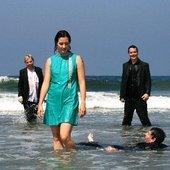 Waves, 2008