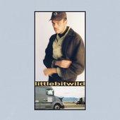 littlebitwild (feat. Mallrat) - Single