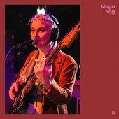 Mega Bog on Audiotree Live