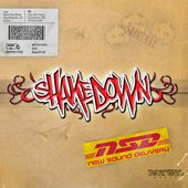 DIFFERENT ARTIST - Shakedown - New Sound Delivery