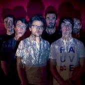 FAUVE Band