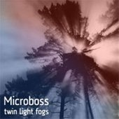 Twin Light Fogs