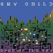 Open Up the Sky - Single