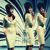 The Ronettes-16.png