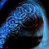 Аватар для Astair36