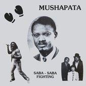 Saba-Saba Fighting
