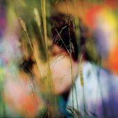 Sam Amidon Self-Titled Album Cover