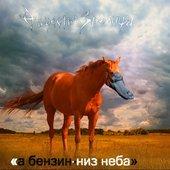 Обложка нового альбома (CD, Выргород, 2013)