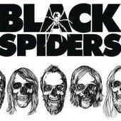 FiveBlackSpiders (TenCojones)