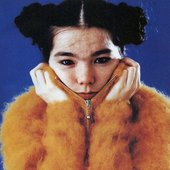 Avatar for Björk