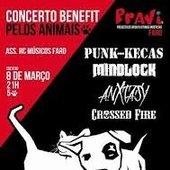 Concerto benefit PRAVI - 2013