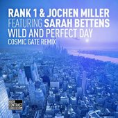 Wild and Perfect Day (Cosmic Gate Remix)