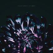 Our Bones - EP