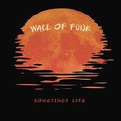 Sometimes Life