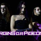 Virgins O.R Pigeons 1