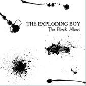 The Black Album - Album 2011