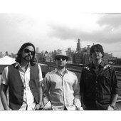 Tim, Tony and Tony