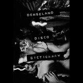 Disco Dictionary