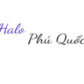 Avatar for halophuquoc