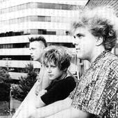 Cocteau Twins, 1985