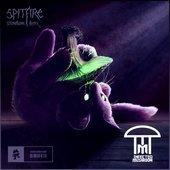 Spitfire (Stonebank Remix)