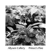 Prince's Pine