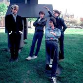 REM, 1983 (Photo by Paul Natkin)