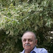 Hasan Kasaei