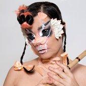 Björk ❤