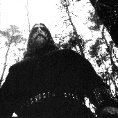 The Forest Wanderer